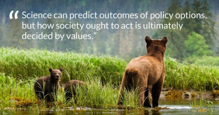 Trophy hunting: Science on its own can't dictate policy
