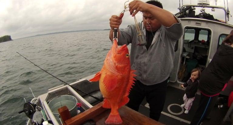 CCIRA's Alejandro Frid, talks rockfish on Roundhouse Radio