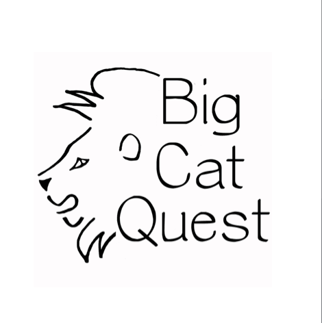 nick achesons big cat quest