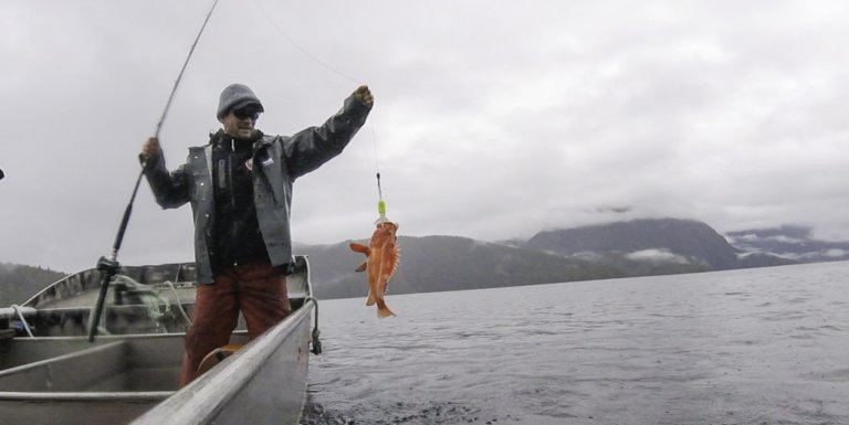 Rockfish research linked to indigenous rights