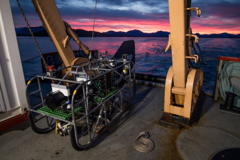 Deep sea expedition highlights value of partnerships for marine conservation