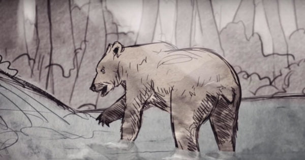 The Banff Centre: Grizzly Bear Babysitter