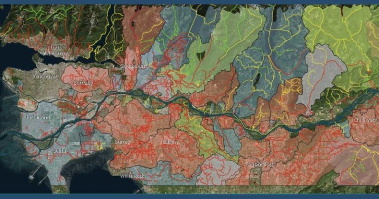 Creating a living atlas for salmon and salmon habitat in the Lower Fraser