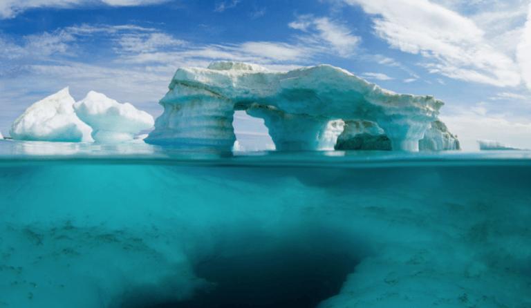 Hakai magazine: Frozen Ocean