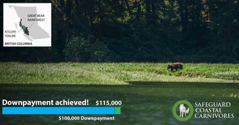 Success! We now have the downpayment for the Kitlope tenure
