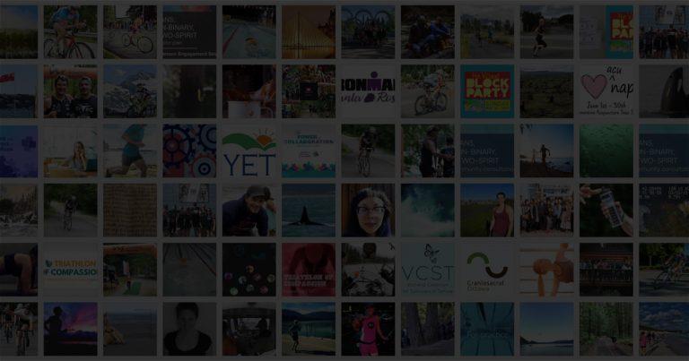 pink sheep media community hub v1.0