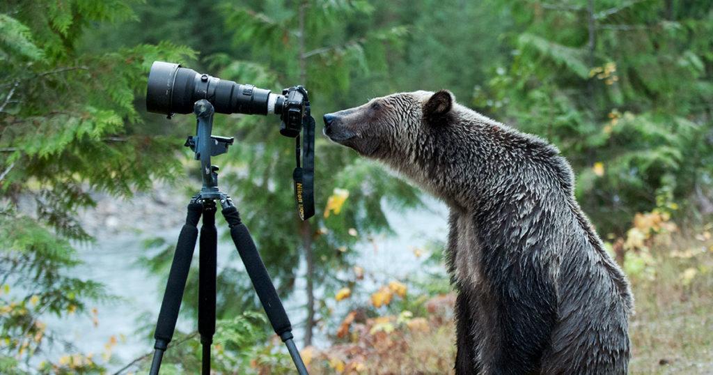 launching raincoasts photography ethics