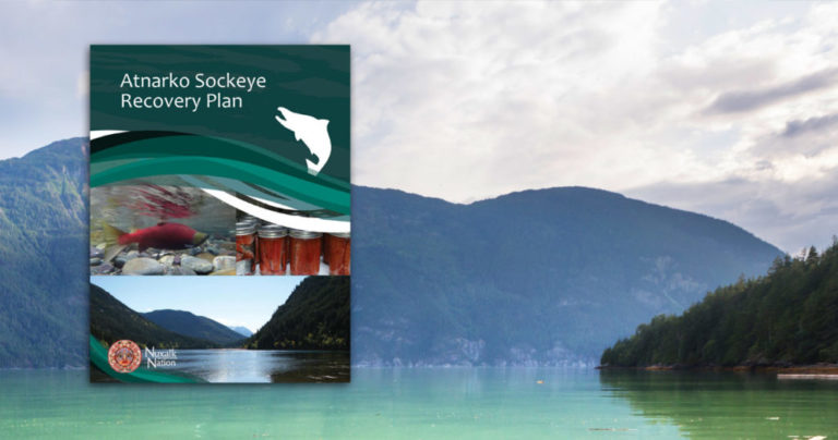 Nuxalk Atnarko sockeye study an example of collaborative research done right