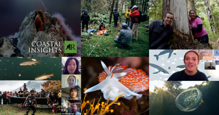 Coastal Insights online education series about nature, people, and place is now complete and available