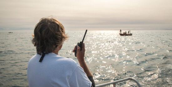 seismic survey threatens endangered whales
