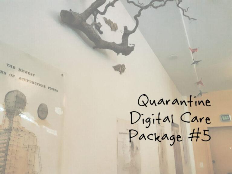 Quarantine Digital Care Package #5