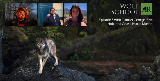 indigenous perspectives on the wolf