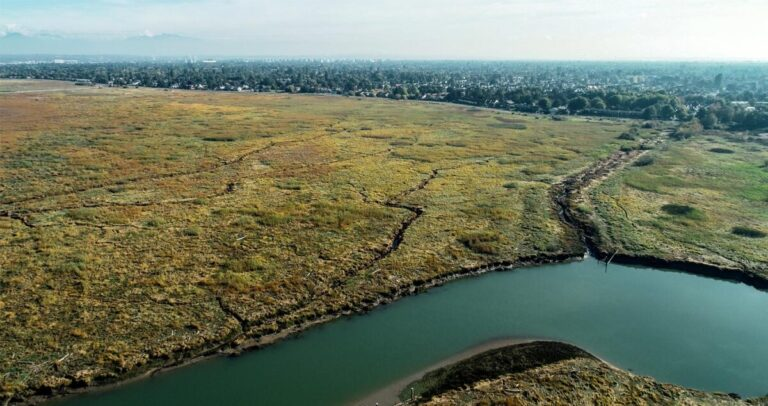 Watersheds 2020 Forum – some lessons from the Lower Fraser River