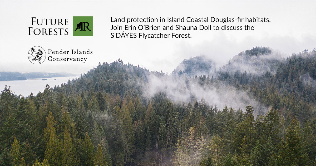 join us for this webinar future forests land protection in island coastal douglas fir habitats