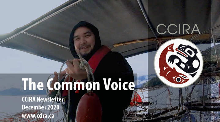 Common Voice: Issue #12, December 2020