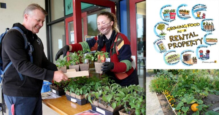 Growing Resilience Through Food!