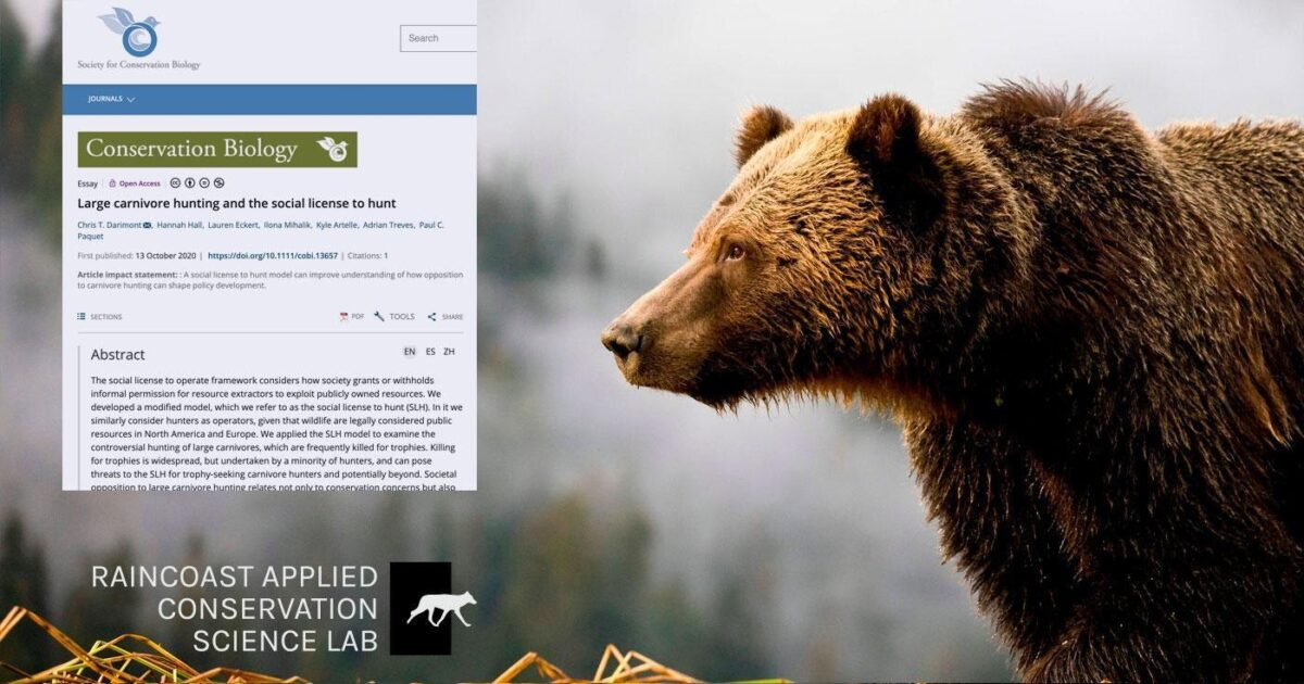 research the eroding social license to hunt carnivores
