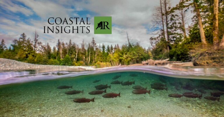 Join us for a webinar on Salmon as a keystone species on the coast