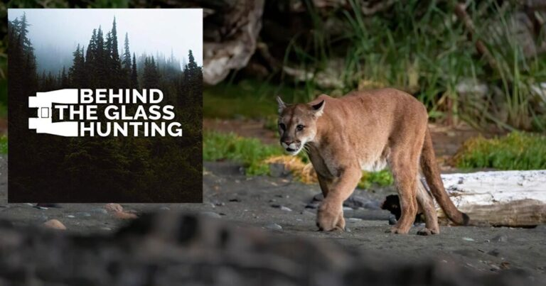 Behind The Glass Hunting with Chris Darimont and Chris Pryn