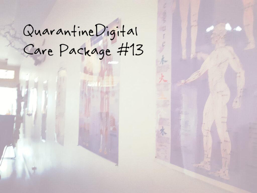 quarantine digital care package 13