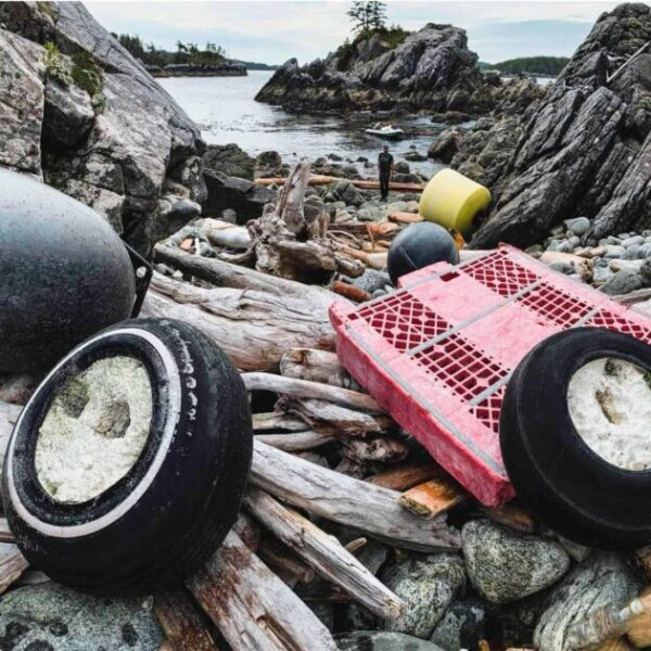 The Great Beach Cleanup